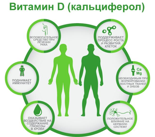 функции витамина Д