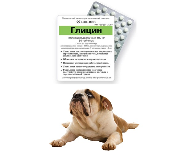 глицин для собак